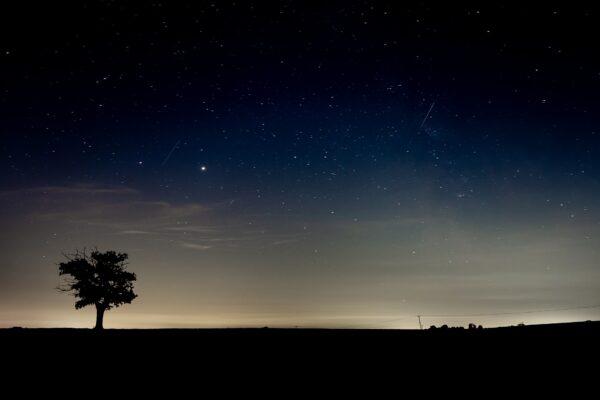 Night Skies at Dusk